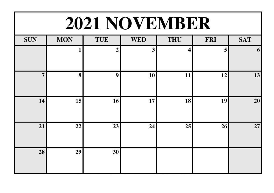 November 2021 Blank Calendar Portrait Poster