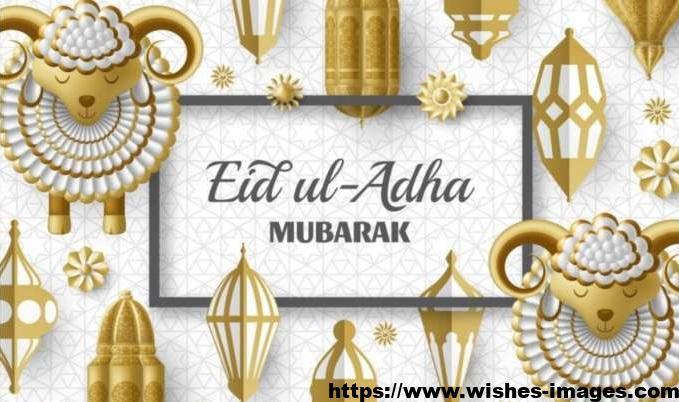 Eid Ul Adha Funny Pics